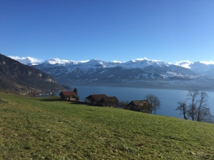 The Lake of Thun and Alps from Sigriswil