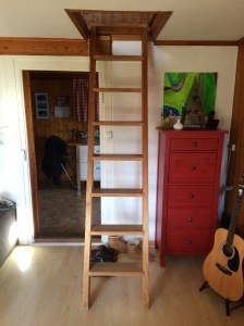The ladder to our bedroom and office has now become an important part of my home exercise routine!