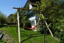 Lovely sunny spot for a hammock